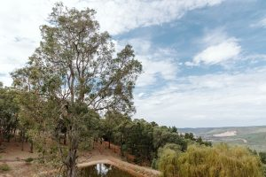Nannup Hideaway View