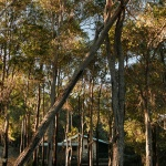 Nannup treet tops cottage distance